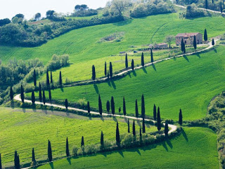 Val-d_Orcia-strada-panoramica